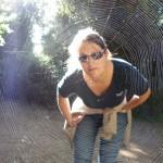 spider Ddl