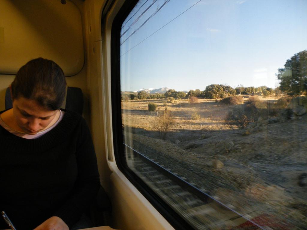 Dans le train